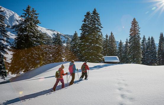 Winterlaken Card - Schneeschuhlaufen